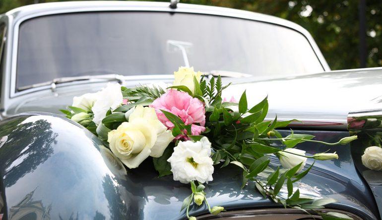 Best Farm Wedding Venue In Miami Florida Reception Venues